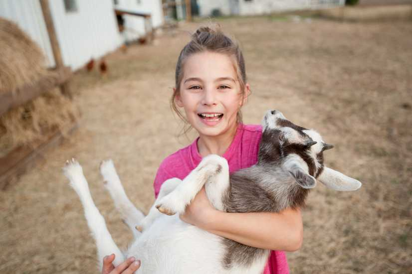 Natasha was worried about how the kids would adjust after leaving their city neighborhood they'd lived in for 14 years. Caring for the animals brought happiness. 'It felt so good to see them loving their new farm life,' she said.