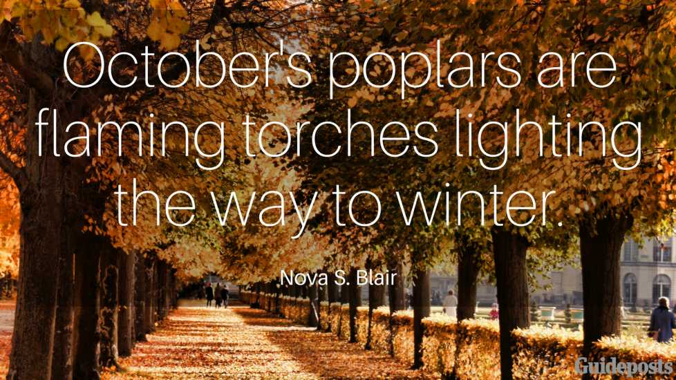 October's poplars are flaming torches lighting the way to winter. —Nova S. Blair
