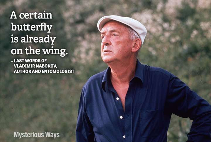 Guideposts: Vladimir Nabokov, author and entomologist--A certain butterfly is already on the wing