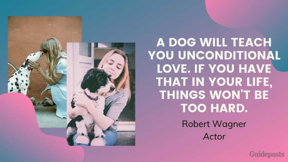 Sentimental Dog Quote: A dog will teach you unconditional love. If you have that in your life, things won't be too hard. —Robert Wagner, Actor dog lover