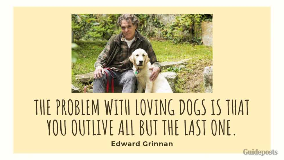 Sentimental Dog Quote: The problem with loving dogs is that you outlive all but the last one. —Edward Grinnan
