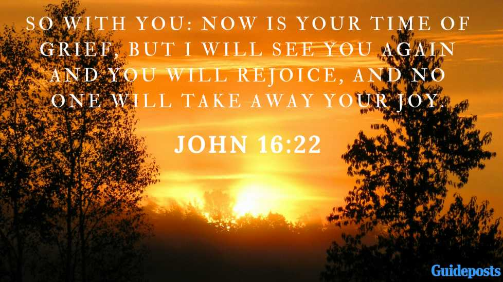 Bible Verse for Coping With Grief: So with you: Now is your time of grief, but I will see you again and you will rejoice, and no one will take away your joy. John 16:22 Better Living Life Advice