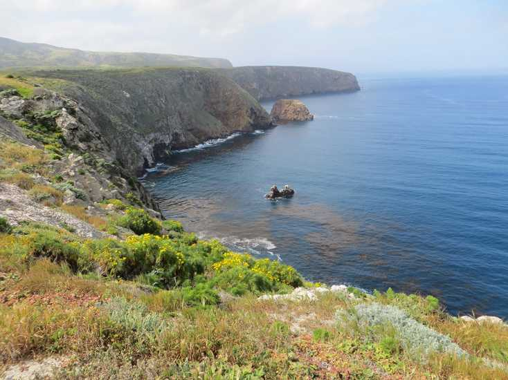 Channel Islands National Park comprises five islands off the southern California coast