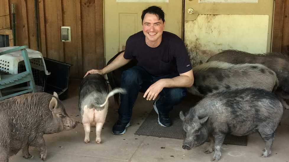 Doug poses with some porcine pals