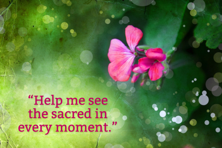 Help me see the sacred in every moment
