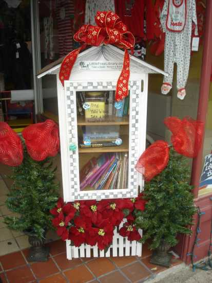 Little Free Library in Rochester