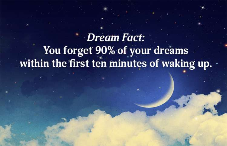 Forget Dreams Fact