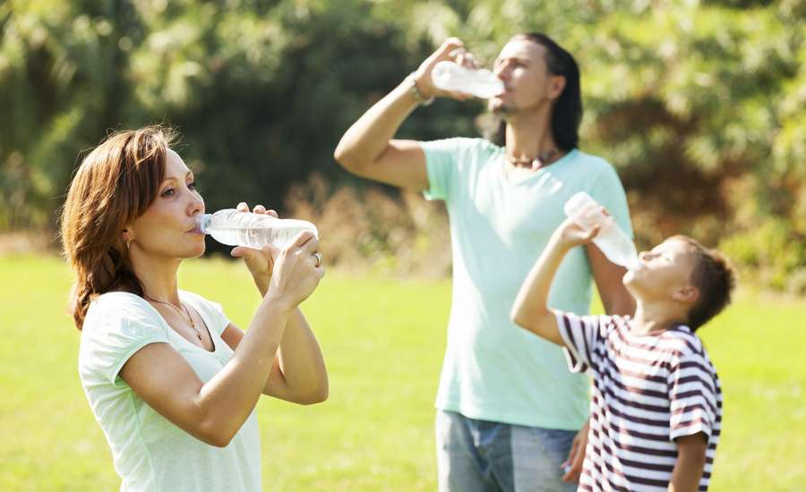 Family drinking water, staying hydrated in the summer