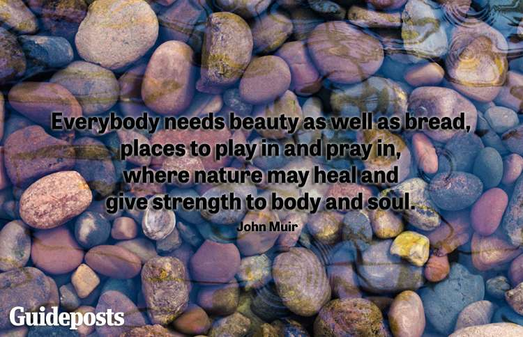 Everybody needs beauty as well as bread, places to play in and pray in, where nature may heal and give strength to body and soul. -John Muir