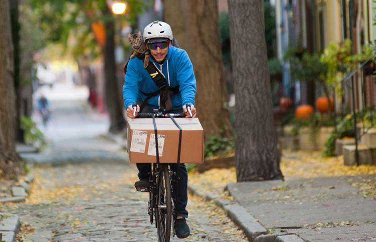 Bike courier Rudi Saldia and his able feline assistant--a striped tabby named MJ, short for Mary Jane--cover an average of twenty-five miles on two wheels on their rounds every day.