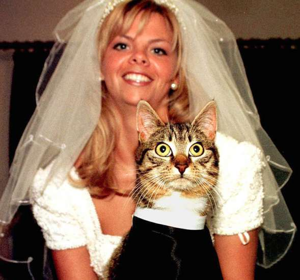 A three-legged brown tabby cat named Sisco from East Belfast, Ireland came to be known as Reverend Cassidy in the 1980s, when the Universal Life Church announced that it would ordain anyone who wanted to serve both God and His people.