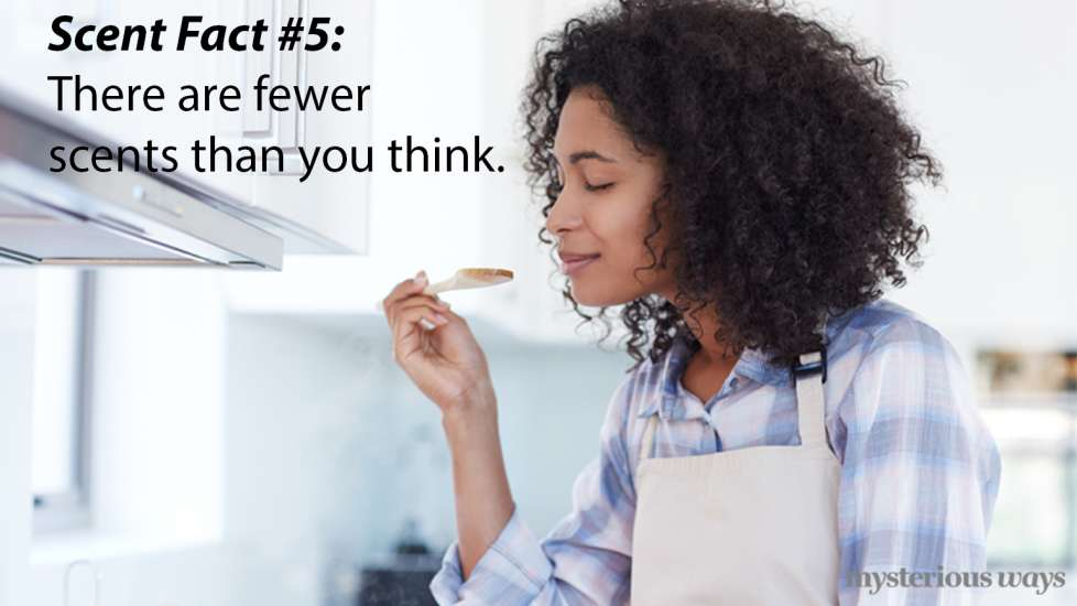 There are fewer scents than you think