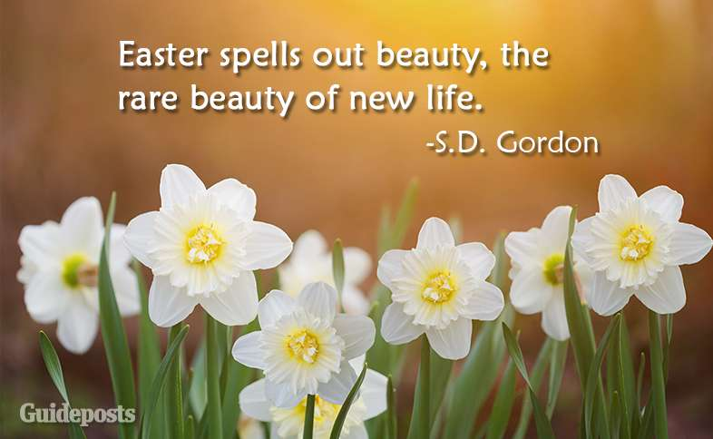 Easter spells out beauty, the rare beauty of new life.  ~S.D. Gordon