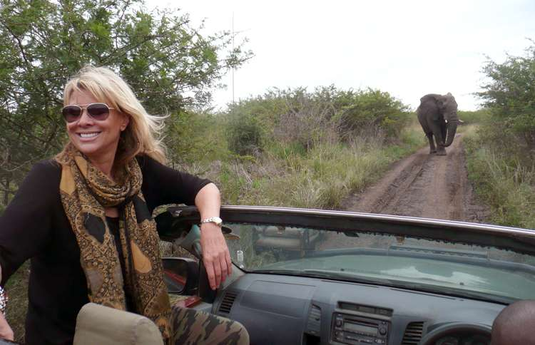 Guideposts: Françoise, riding in the back of an open jeep, comes upon an elephant on the road
