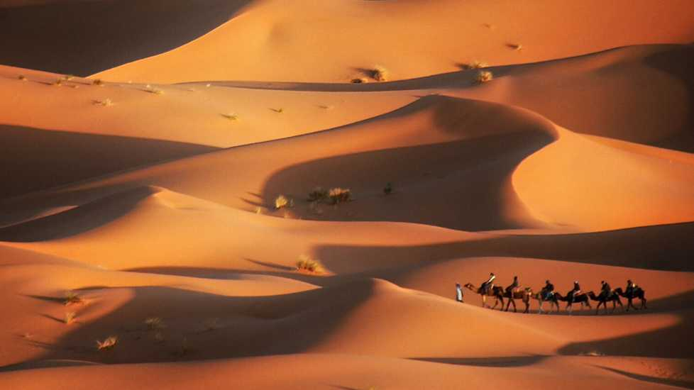 Caravan in the desert, Merzouga, Morocco