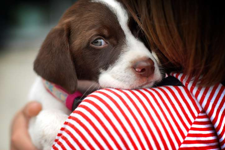 Guideposts: A puppy cuddles with a young woman