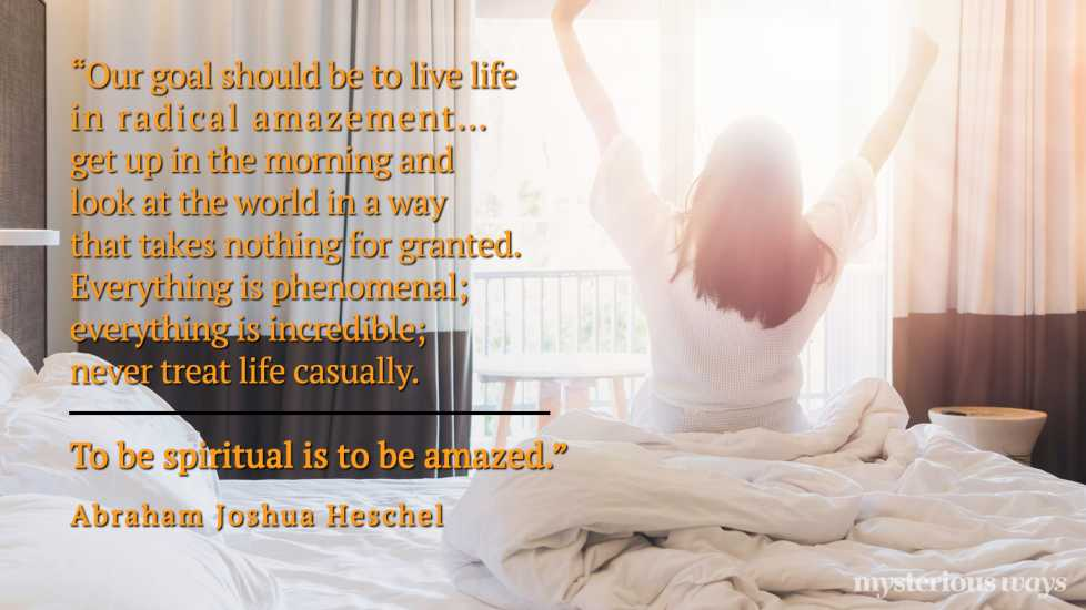 """""""Our goal should be to live life in radical amazement… get up in the morning and look at the world in a way that takes nothing for granted. Everything is phenomenal; everything is incredible; never treat life casually. To be spiritual is to be amazed."""""""