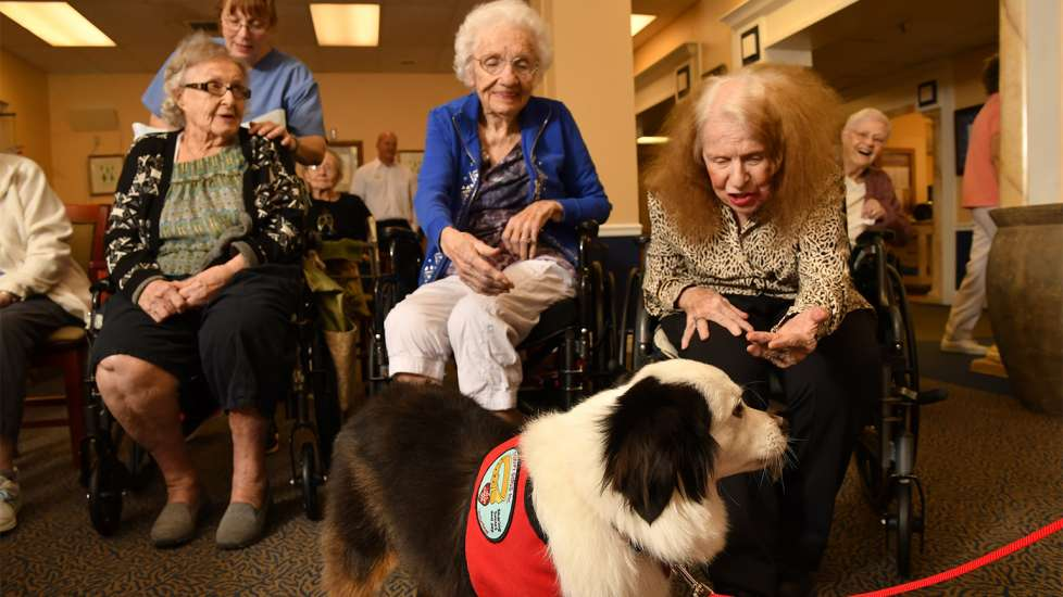 Residents light up when they see Jack coming. His daily visits are definitely a highlight for them.