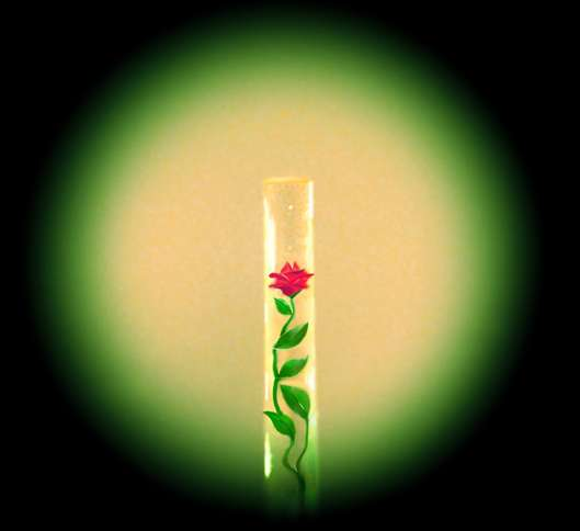 Guideposts: A beautiful red rose inside a hair—yes, a hair!