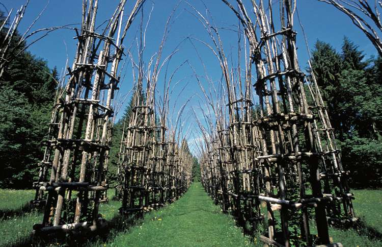 Guideposts: Giuliano Mauri's Cattedrale Vegetale, a cathedral made entirely of trees outside Bergamo, Italy