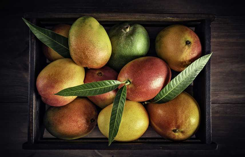 Healthy Summer Fruits to Add to Your Diet: Mangoes are a delicious and sweet summer fruit option. better living health wellness