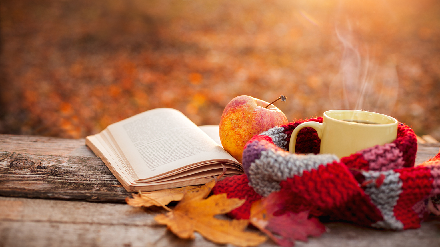 A book, an apple, a cup of coffee and a woolen scarf rest on on a bench on an autumn afternoon