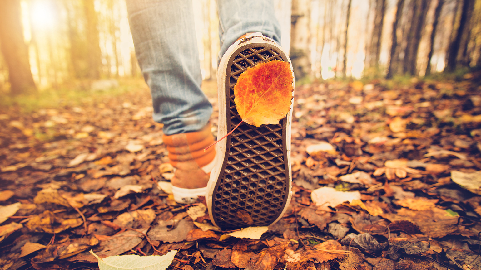 The feet of an autumn hiker