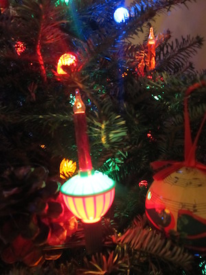 The Christmas lights on Mary Whitney's tree.