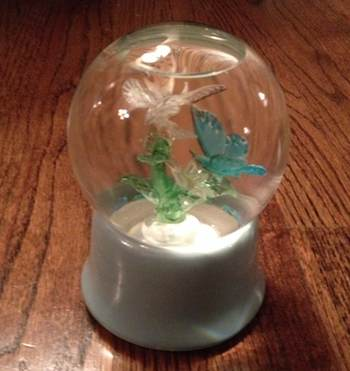 The butterfly snowglobe that Dan Kessel's grandmother bought.