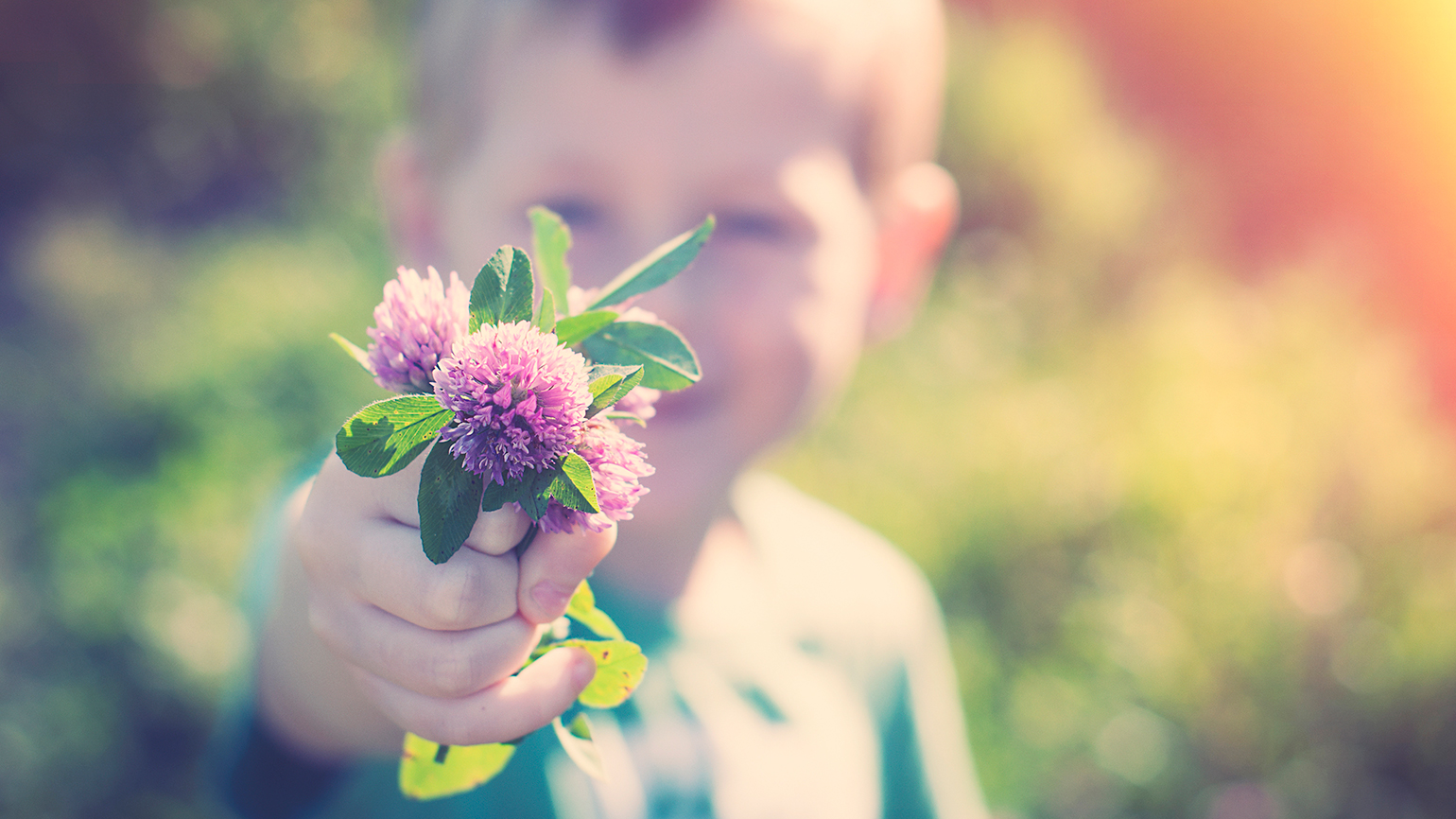 A smiling little boy holds out a freshly picked bunch of purple flowers