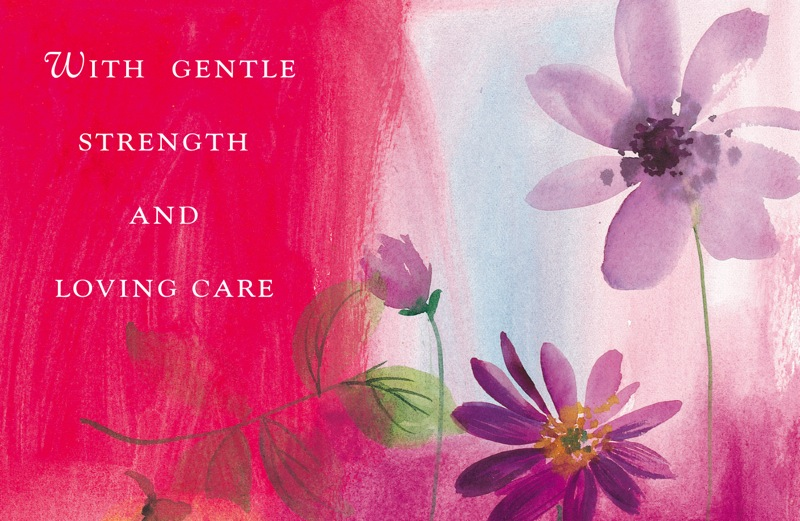 Two purple flowers on a red and blue background from the Someone Cares cards