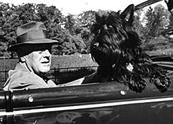 FDR and Fala, out for a drive