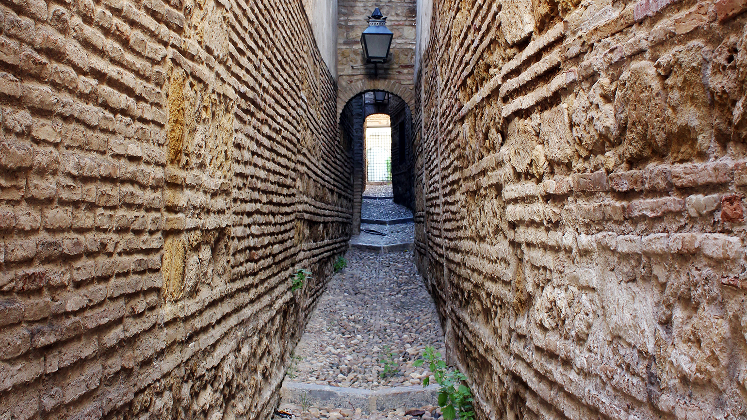 A narrow passageway leading to a gate