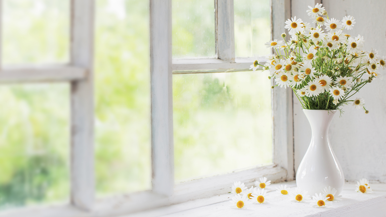 A vase of spring flowers rests near a window
