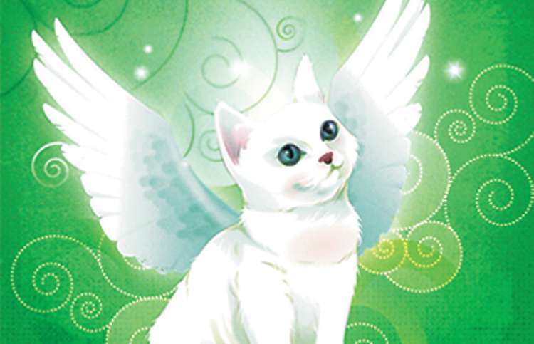 An artist's rendering of a white kitten with angel's wings