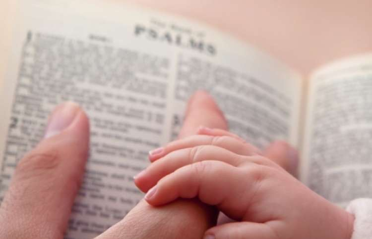 close-up of a hands on a bible