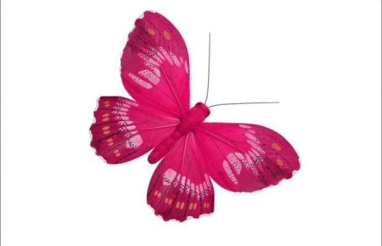 butterfly decoration for a child's room