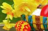 Easter basket with daffodils