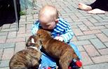 A very cute baby with a pair of adorable puppies