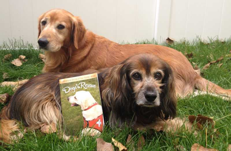 Peggy Frezon's pups pose with 'Dogs to the Rescue' Book by M.R. Wells