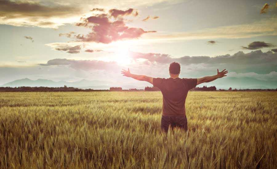 How to be grateful everyday of your life