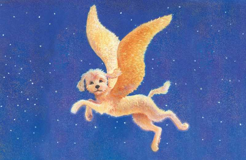 An artist's rendering of a winged Labradoodle soaring in the sky