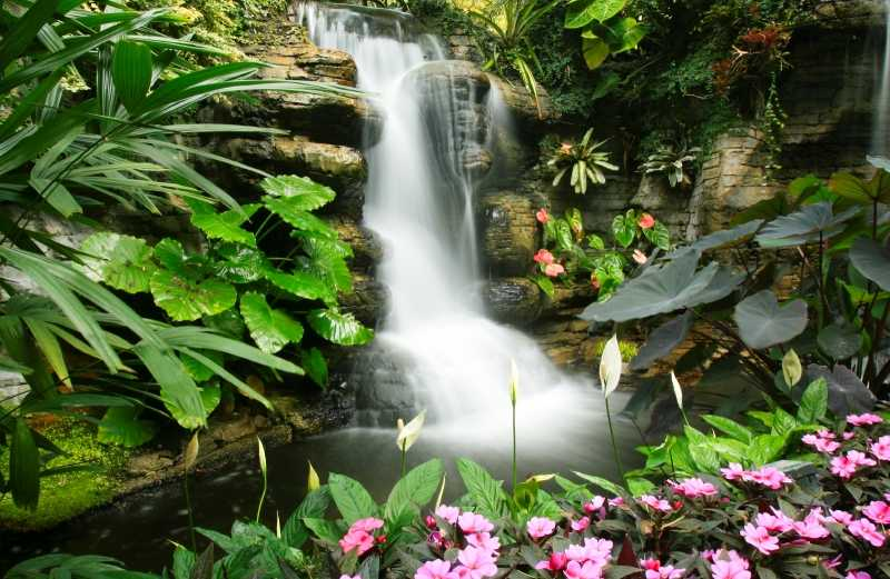 beautiful waterfall in Central America