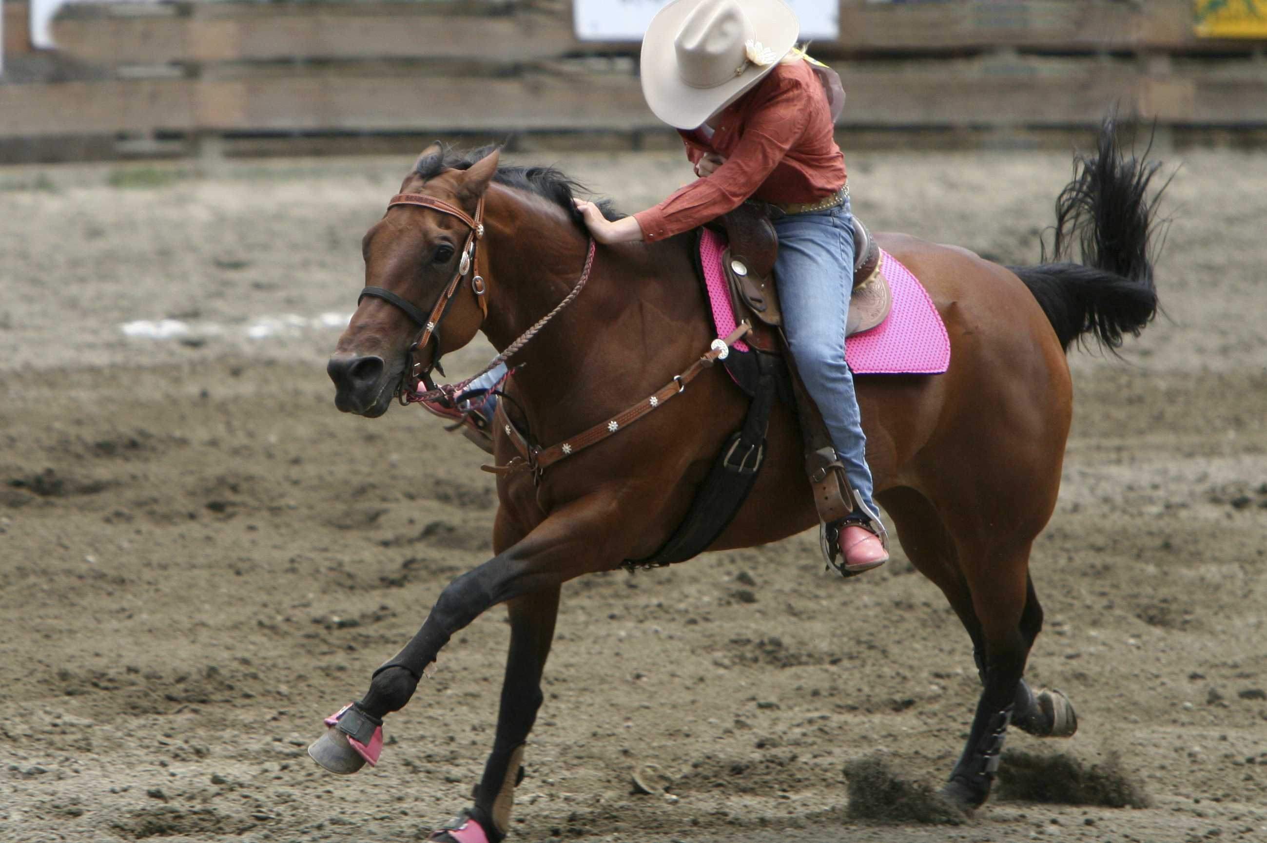woman at rodeo