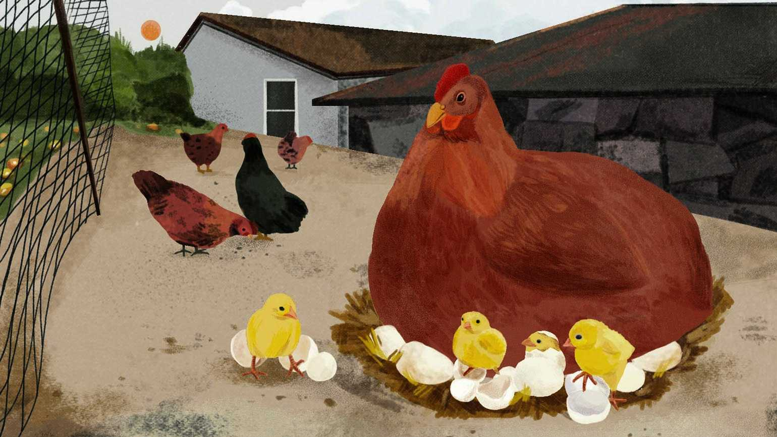 An artist's rendering of a hen with chicks around her.