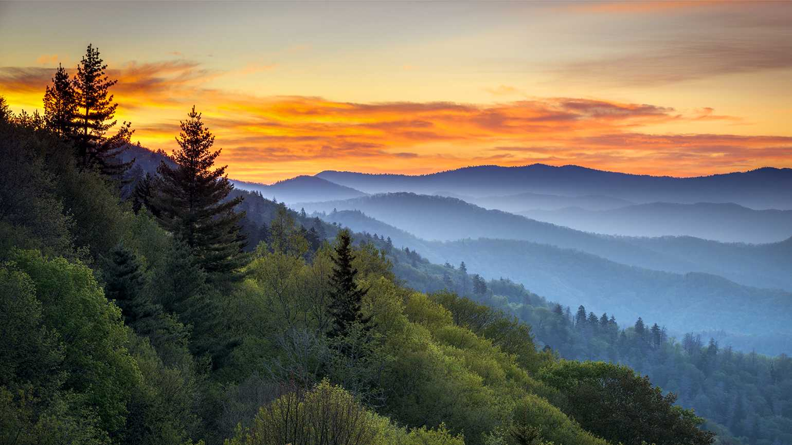 Tennessee's Great Smoky Mountains, where Douglas Scott Clark grew up