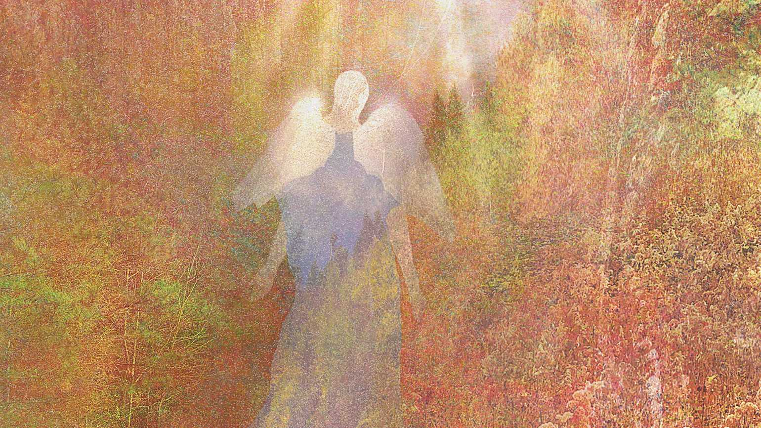 An artist's rendering of a translucent angel hovering in nature with white light above.