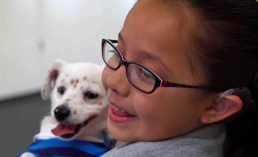 Deaf girl teaches puppy to sign