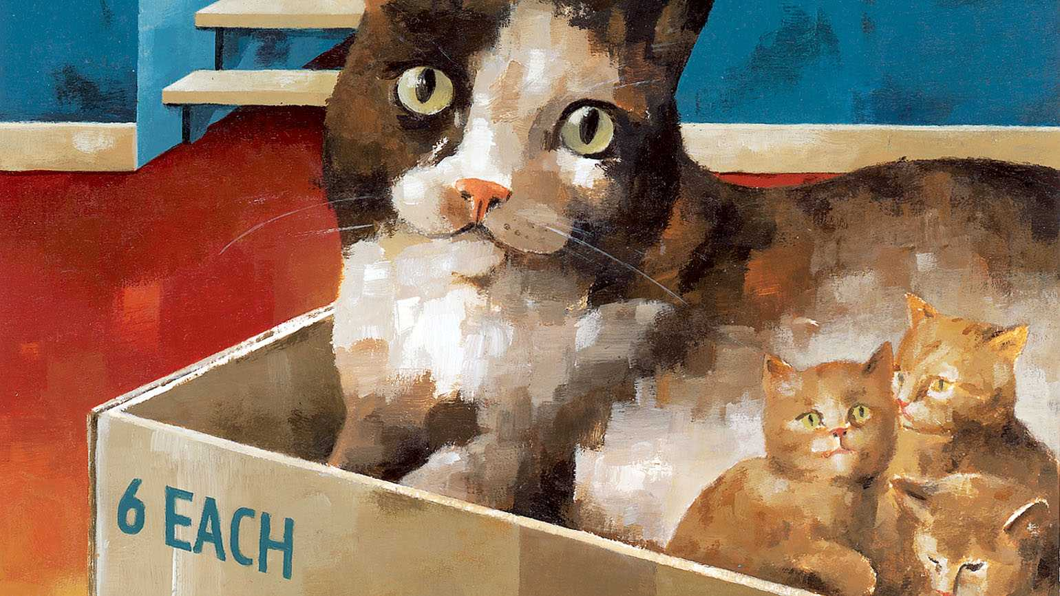 Pancake with her litter of kittens in a box.