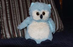 The blue owl on Samuel's bed. Photo courtesy Shawnelle Eliasen.